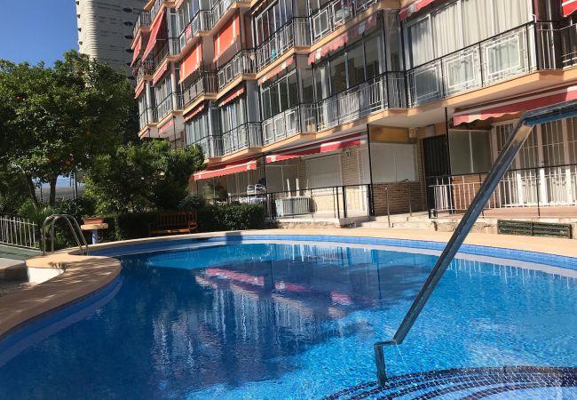 Apartamento en Benidorm - APARTMENT IN NEW TOWN [D-854]