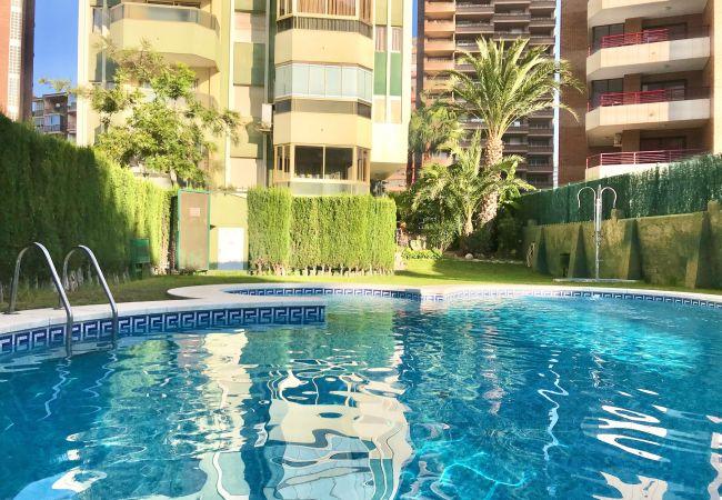 Apartamento en Benidorm - APARTMENT IN LEVANTE BEACH BENIDORM [R522]