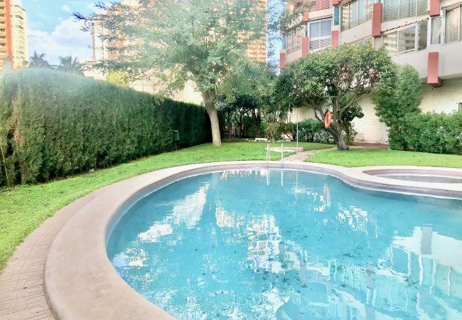 Apartamento en Benidorm - RINCON APARTMENT [R545]