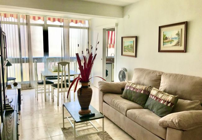 in Benidorm - MEDITERRANEAN AVENUE APARTMENT [R260]
